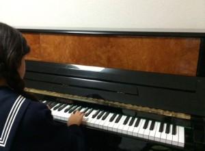 フルシュタイン ピアノパッサージュ株式会社