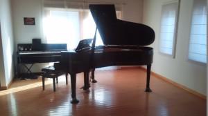 ペトロフ ピアノパッサージュ