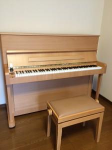 ペトロフP1 ピアノパッサージュ